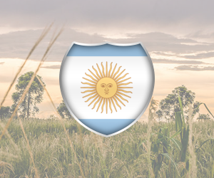 Argentina International Sport Travel